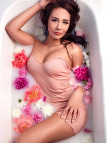 Sex ad by kinky escort Megan (21) in Istanbul - Photo: 3