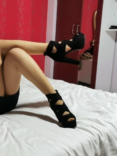 Sex ad by kinky escort Dina (19) in Istanbul - Photo: 4